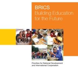 BRICS_Report2